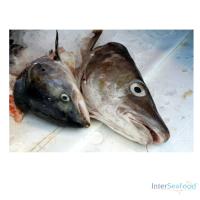 Vissenkop met graat